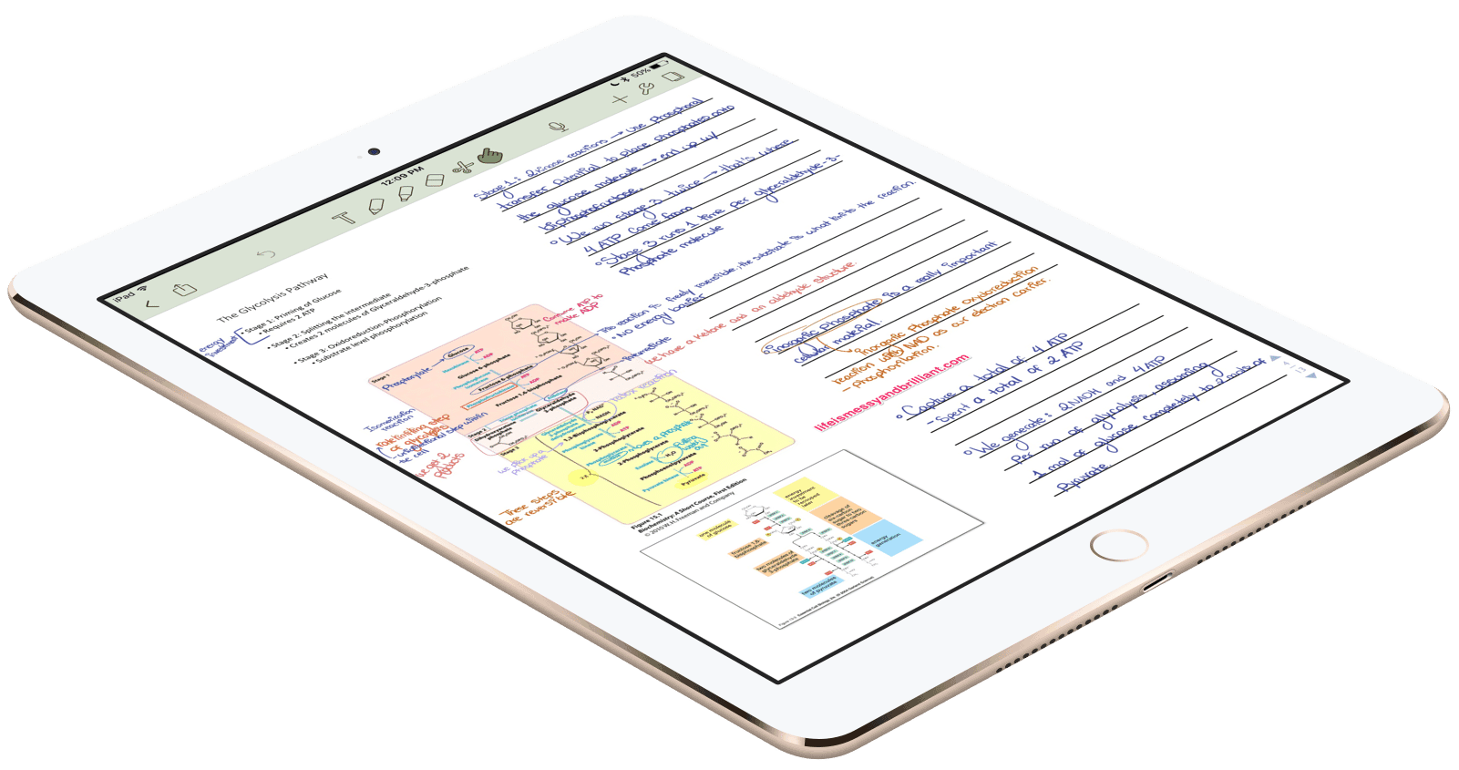 how to use notes on ipad 4