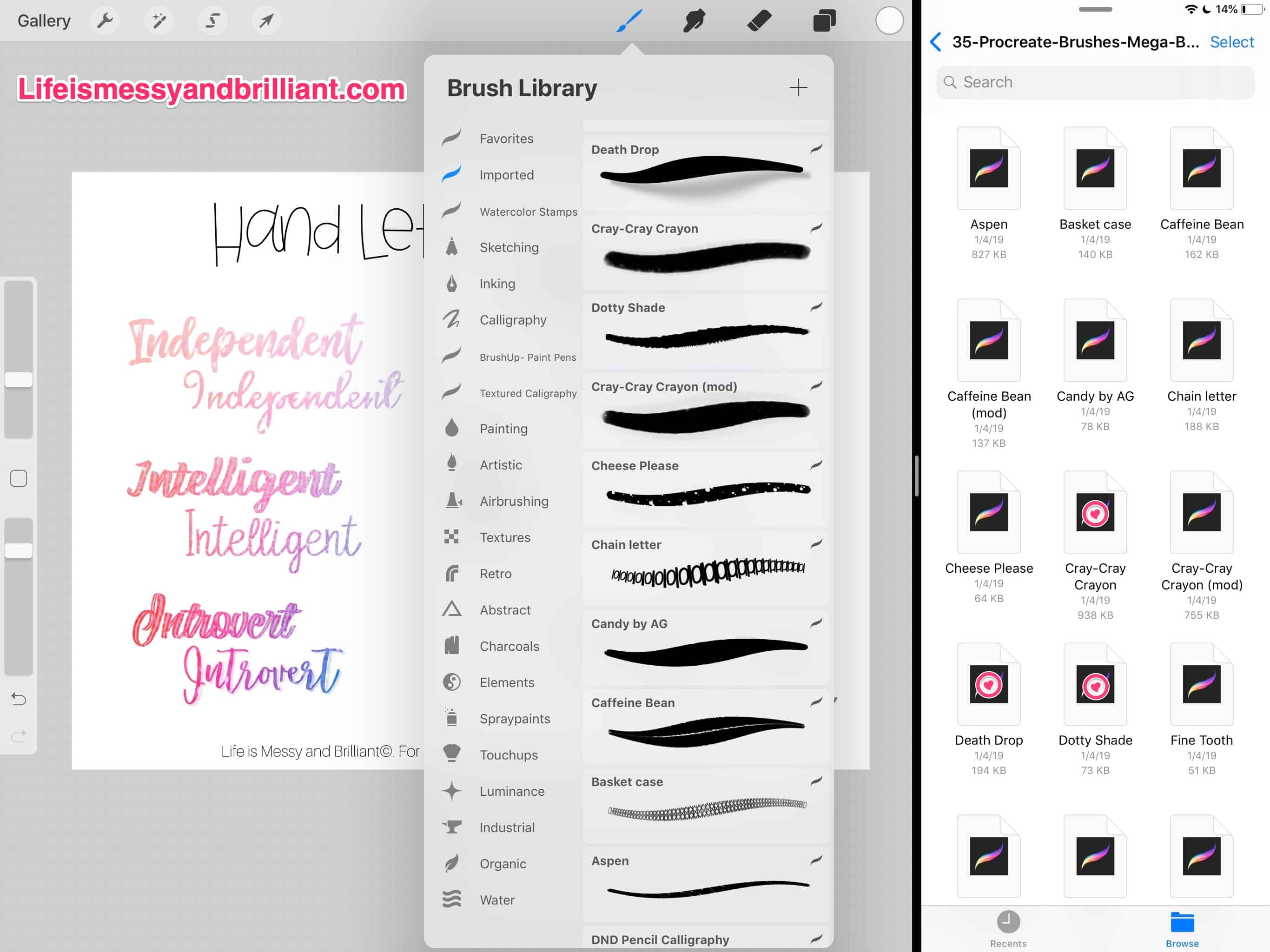 How to Import Pictures and Brushes into the Procreate iPad App
